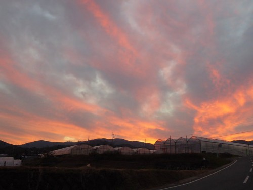 inaka sunset